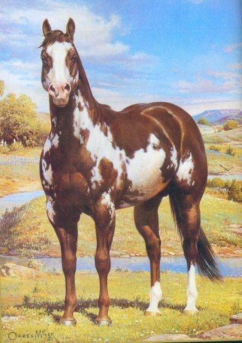 paint horse. Black Bedroom Furniture Sets. Home Design Ideas